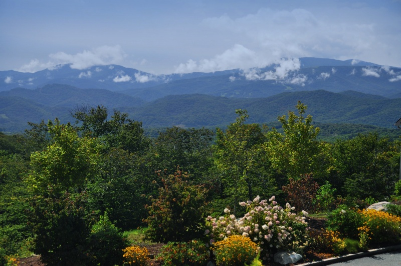 sugar mountain vacation rentals