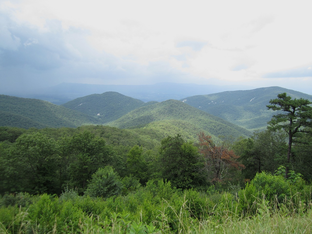 Blue Ridge Parkway is home to many of Grandfather Mountain State Park's trailheads
