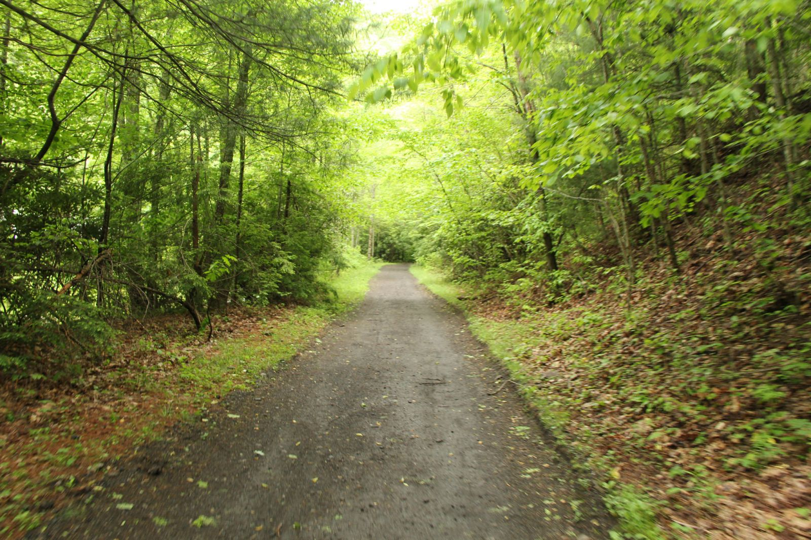 Cycling the Virginia Creeper Trail will take you through historic areas of the beautiful state